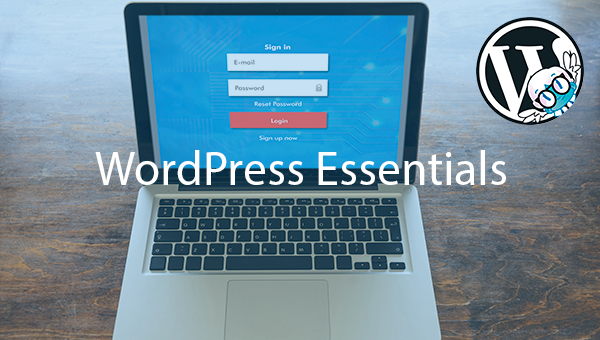 Tips esenciales de seguridad en WordPress – Wp Puebla Wp Tijuana
